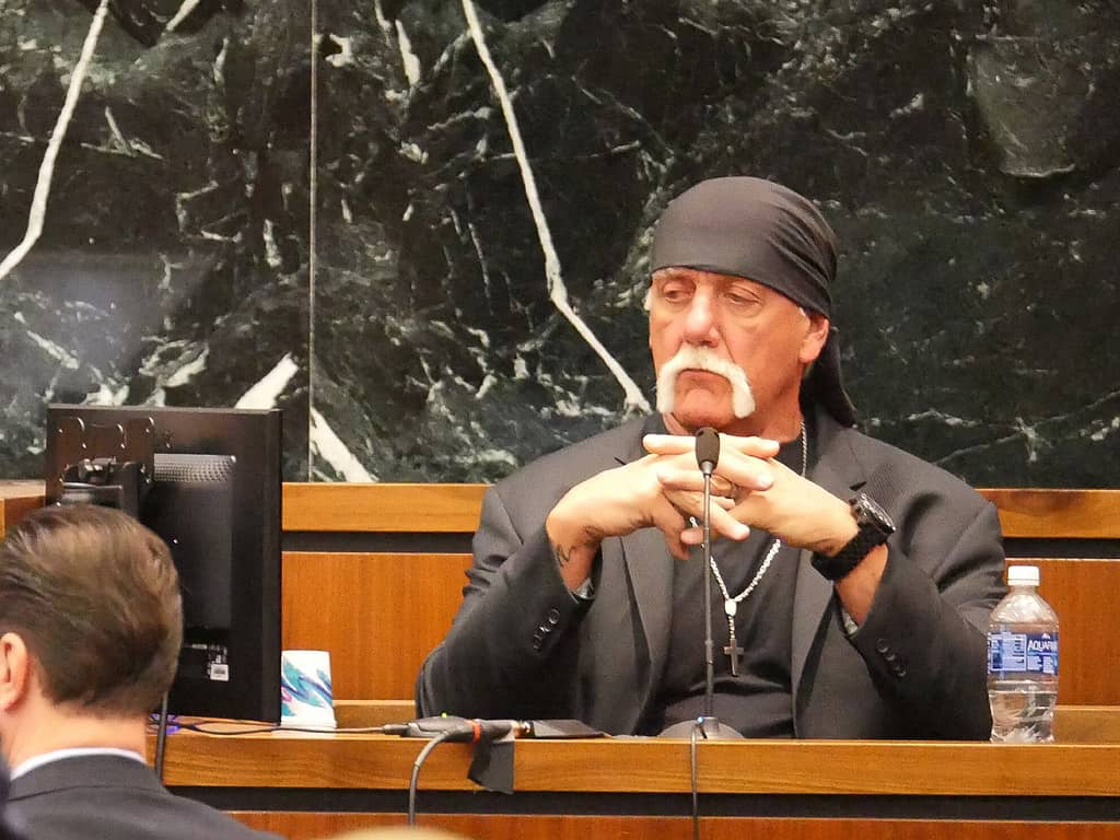 Hulk Hogan at court